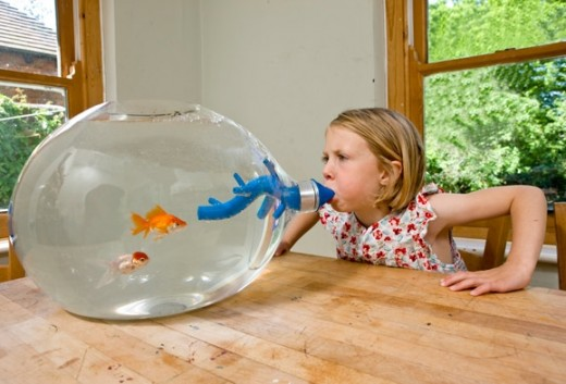 Top 10 most creative and unique fish tanks hubpages for Unique fish tank