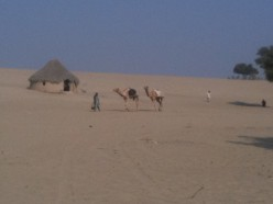 An Experience of Thar Desert Pakistan