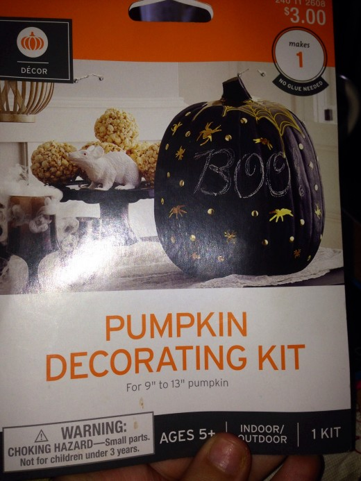 Chalkboard Paint Pumpkin Kit
