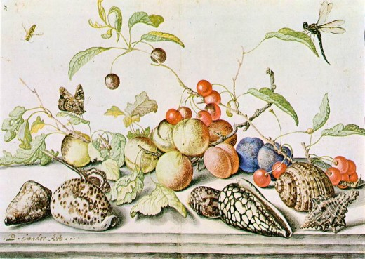 Still Life (1628) by Balthazar van Ast pen and watercolour