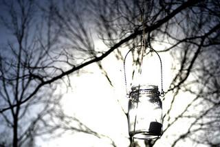 Hang mason jars from the trees