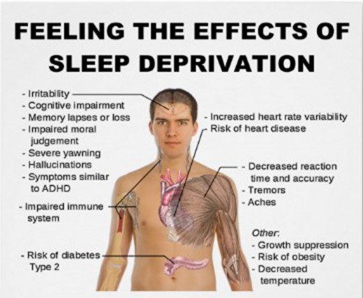 Importance of Sleep