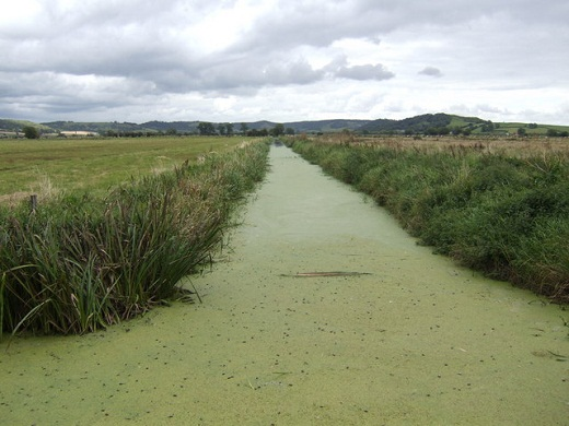 The Eighteen Feet Rhine - a main drainage channel on the Somerset Levels