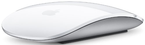 The Apple Magic is a state-of-the-art device which utilizes state-of-the-art touch-sensitive technology.  Apple fans will struggle to find anything that equals this mouse in terms of style, functionality and design.  Simply the best.