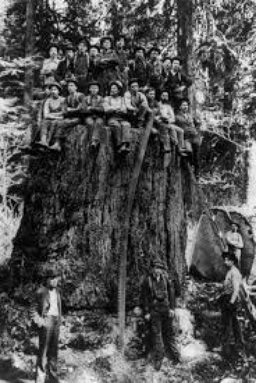 Lumberjack crew in the early days of America