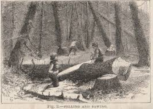 Lumberjacks carved- out our country