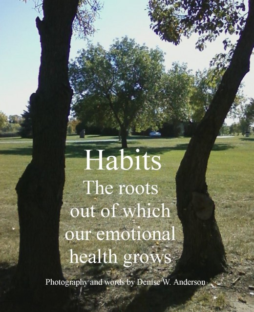 Our habits from the basis of our ability to recognize and determine our emotional health.