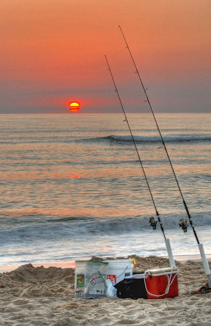 The advantages of living in florida hubpages for Surf fishing florida