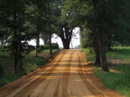 Nathaniel's thoughts carried him down the dirt road and deep into his emotions