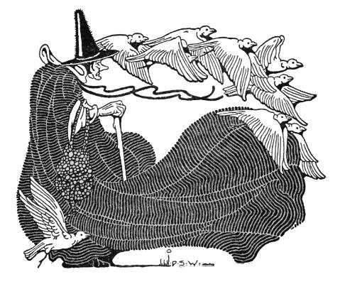 Halloween image - Witch with birds. (Besides regular photos, you can also use 'graphic' images.