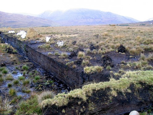 A bog is basically a very wet, spongy ground with soil composed mainly of decayed vegetable matter. There are peat bogs like the one pictured here in the photo.