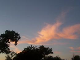 Sky so radiant