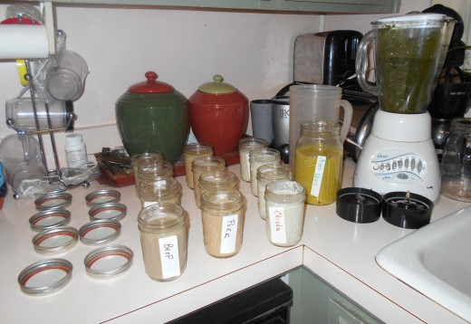 Homemade, tasty liquid meals READY to FREEZE: BEEF, PORK, CHICKEN