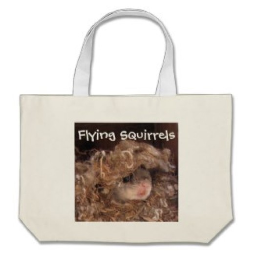 Use this bag to store take-home themed lesson materials.