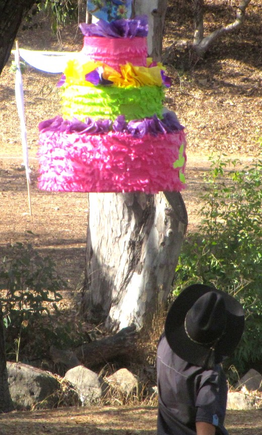 A pinata hanging from a branch of an Oak tree.