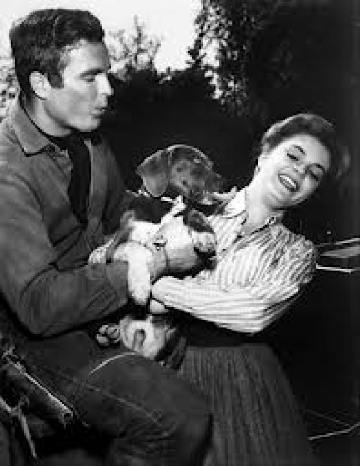 In 1962, Hardin makes points with a pretty girl by petting her puppy