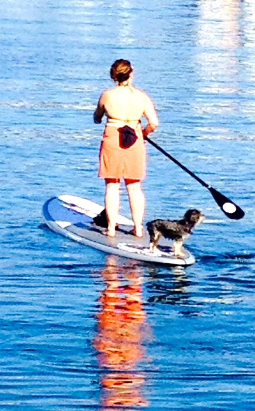 Paddle boarding couple.
