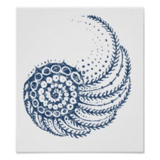 Seashells are inspiring. Posters and other items available by clicking the source link.