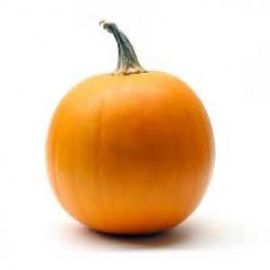 If Apples are King,Pumpkins Must be Queen