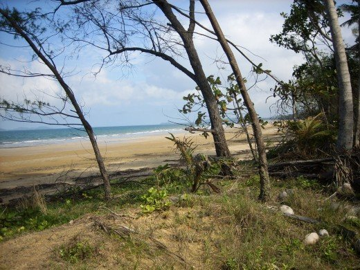 Mission Beach, Tropical North Queensland, Australia
