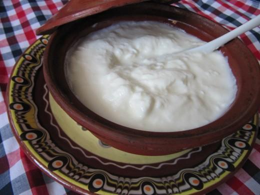 What is Greek yogurt. This is what the famous Greek yogurt or Tzatziki looks like.