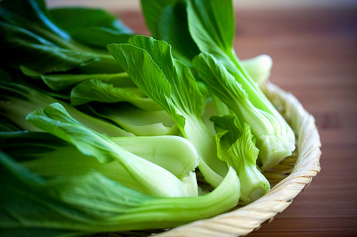 Bok Choy is a crunchy, nutrient-packed food, brilliant for the rabbit's digestive system hence the fiber.