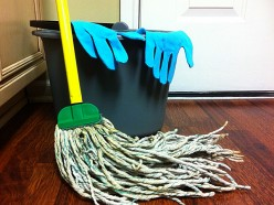 Shark Steam Mop - A Lazy Mom's Best Friend