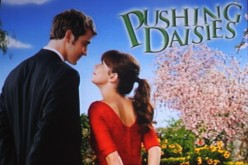 Pushing Daisies - A Review