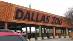 Traveling Around - Dallas, Texas - The Dallas Zoo