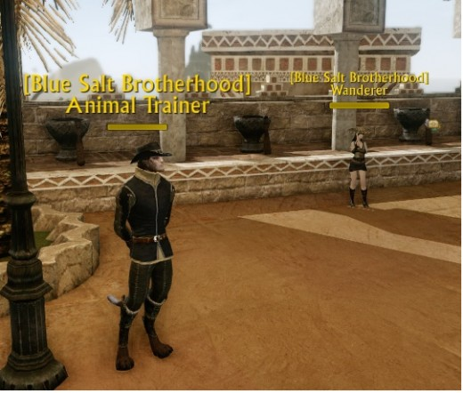 These are the Blue Salt Brotherhood representatives in Solana that give out the daily quests.