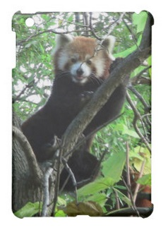 Red Panda iPad Case