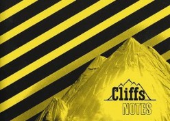 The Use and Abuse of Cliff's Notes