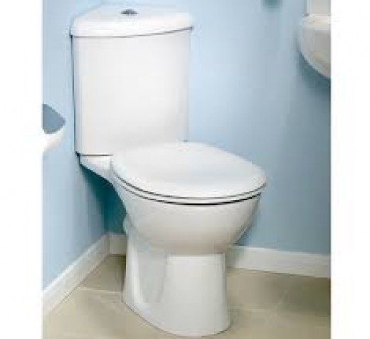Modern dual-flush toilets can use less water.