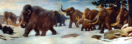 Wooly mammoths near the Somme River, AMNH mural.