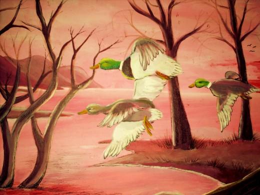Beautiful wings...