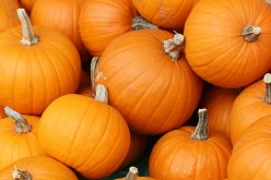 10 Ideas to Use Pumpkin this Season
