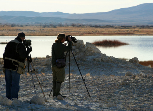 Participants in the 2009 Christmas Bird Count at Ash Meadows NWR