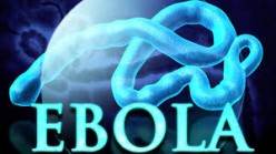 Ebola Virus Outbreak Vaccine