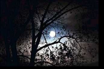 At midnight on All Hallows Eve.