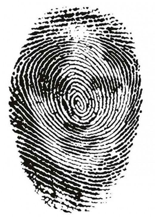 The identifying Fingerprints