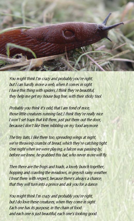 A Critter Poem