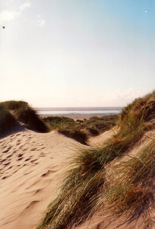 Through the Dunes