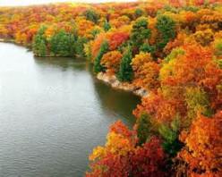 Autumn is Captivating