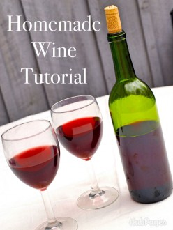 How to Make Easy Homemade Wine (Red or White)