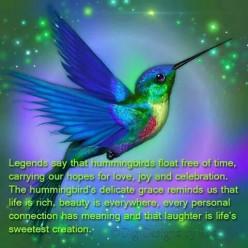 Set the Bird Free