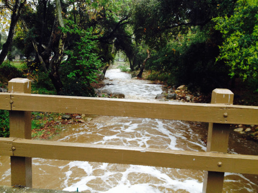 My hope is that all California streams and creeks will flow like this one day.