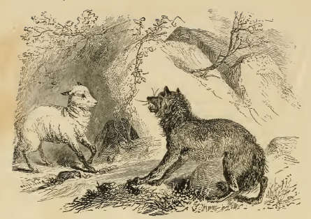 Scene from the story of wolf and the lamb