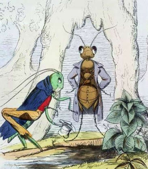 The Ant and the Grasshopper by Charles Bennett