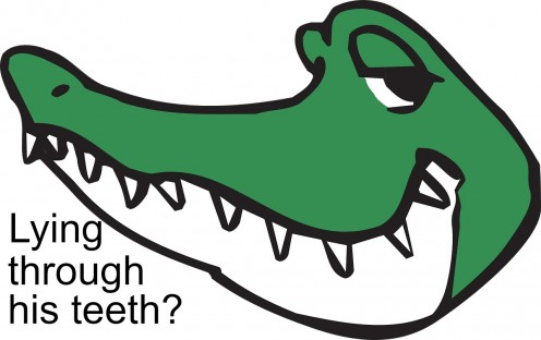 Is this alligator with his toothy grin hiding a lie?
