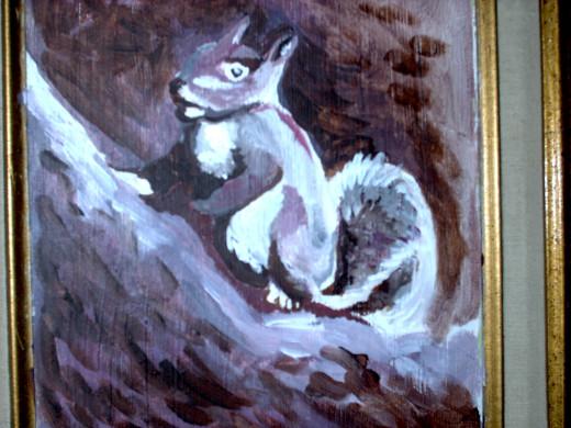 grey squirrels seeking acorns...